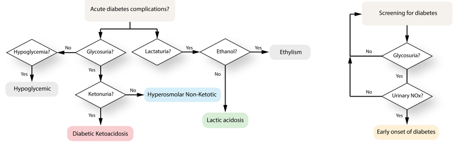 library/examples/C2-19-Biochemical-Programming/algo.png